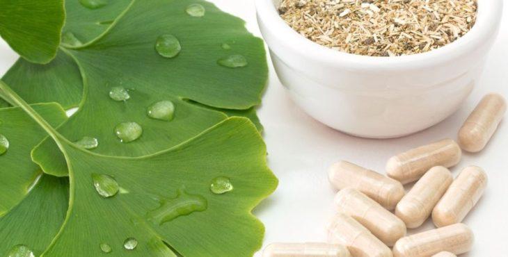 Гинкго: полезные свойства и применение в лекарственных целях