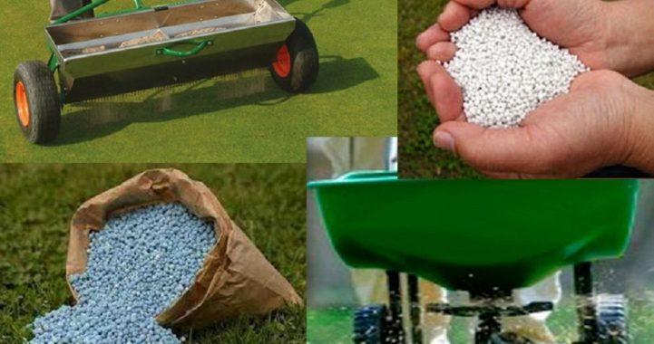 Летние удобрения для газонной травы