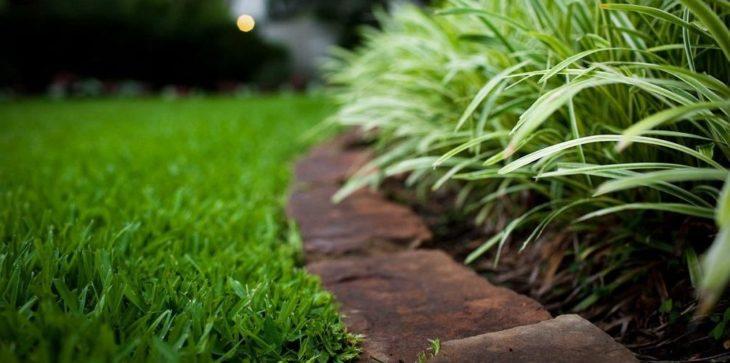 Удобрения для зеленого газона