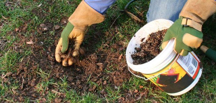 Комплексные удобрения для газонной травы